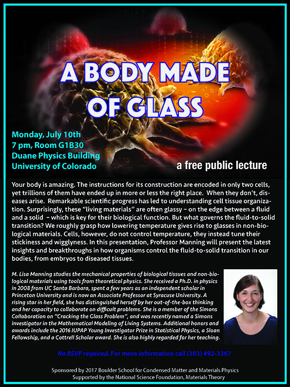 Boulder School 2017 Public Lecture with Lisa Manning - A Body Made of Glass